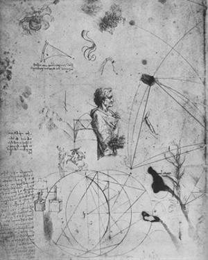 'Profile of an Old Man, Plants, Geometrical Figures, Etc.', c1480 (1945) by Leonardo Da Vinci