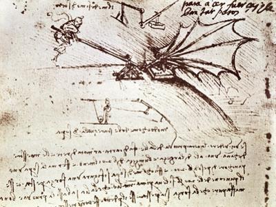 Project for Flapping-Wing Machine by Leonardo da Vinci
