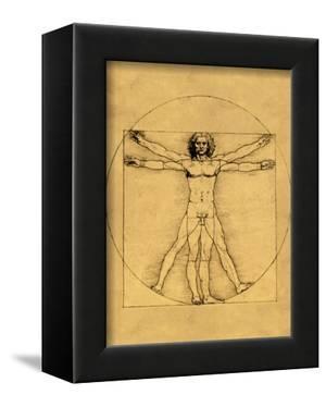 Proportions of the Human Figure by Leonardo da Vinci