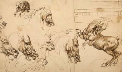 Rearing Horse and Study of Horse, Lion and Human Heads, Drawing, Royal Library, Windsor by Leonardo da Vinci
