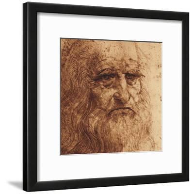 Self Portrait (detail) by Leonardo da Vinci