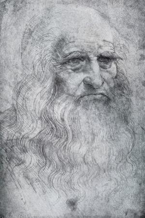 Self Portrait of Leonardo Da Vinci, C1512-1515