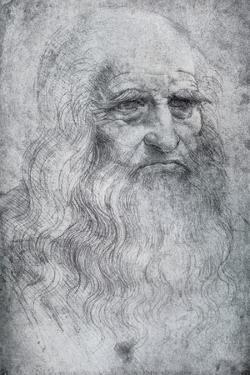 Self Portrait of Leonardo Da Vinci, C1512-1515 by Leonardo da Vinci