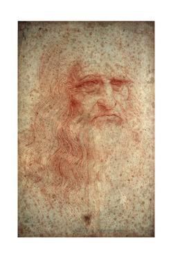 Self Portrait of Leonardo Da Vinci, Italian Painter, Sculptor, Engineer and Architect, C1513 by Leonardo da Vinci