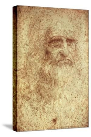 Self-Portrait by Leonardo da Vinci