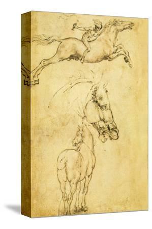 Sketch of a Horse by Leonardo da Vinci