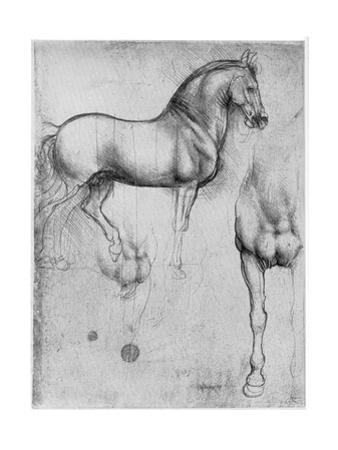 Studies of Horses, C1490