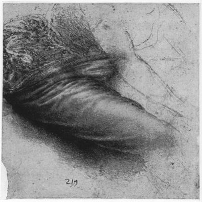 Study of a Garment for St Anne, 1503-1517 by Leonardo da Vinci