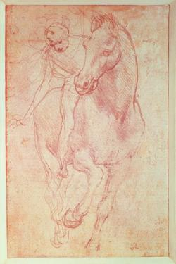 Study of a Horse and Rider, C.1481 by Leonardo da Vinci