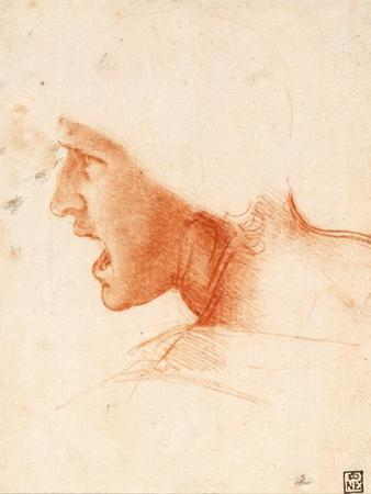 Study of a Warrior's Head for the Battle of Anghiari by Leonardo da Vinci