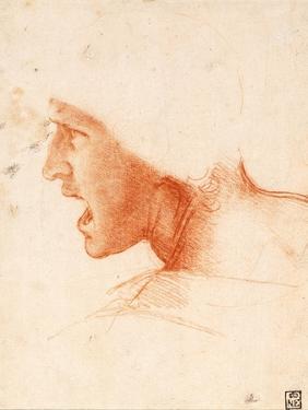 Study of a Warrior's Head for the Battle of Anghiari by Leonardo da Vinci