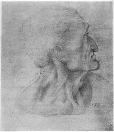 Study of Judas for the Last Supper, C1495 by Leonardo da Vinci