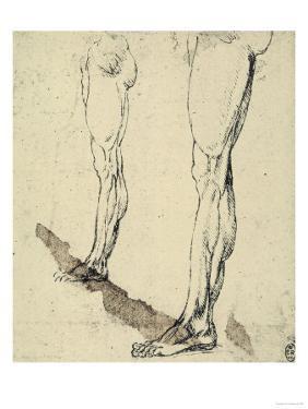 Study of Legs, Drawing, Royal Library, Windsor by Leonardo da Vinci