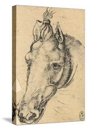Study of the Head of a Horse, Pen Drawing on Paper Turned Yellow, Royal Library, Windsor
