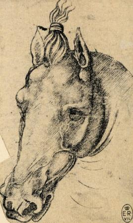 Study of the Head of a Horse, Pen Drawing on Paper Turned Yellow, Royal Library, Windsor by Leonardo da Vinci