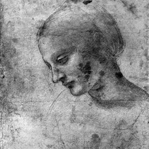 Study of the Head of the Madonna, 15th Century by Leonardo da Vinci