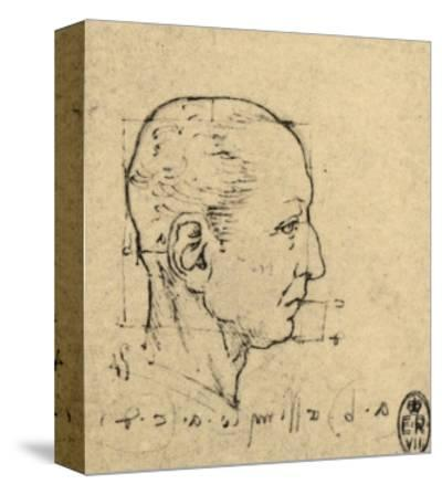 Study of the Proportions of a Human Face, Drawing, Royal Library, Windsor by Leonardo da Vinci