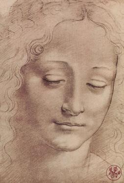 Testa di Giovinetta by Leonardo da Vinci