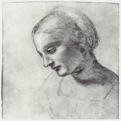 The Head of a Madonna, C1484-1486 by Leonardo da Vinci