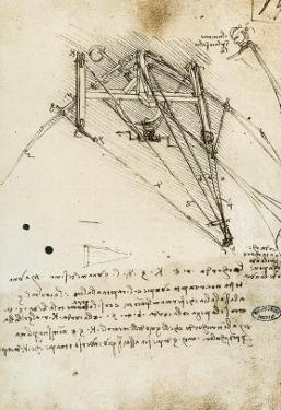 The Rudder of a Wing, Institut De France, Paris by Leonardo da Vinci