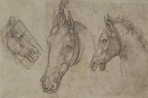 Trois têtes de chevaux by Leonardo da Vinci