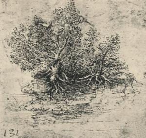 'Two Trees on the Bank of a Stream', c1480 (1945) by Leonardo Da Vinci