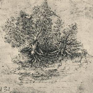 'Two Trees on the Bank of a Stream', c1480 (1945) by Leonardo da Vinci