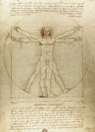 Vitruvian Man (Canon of Proportions)