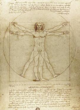 Vitruvian Man (Canon of Proportions) by Leonardo da Vinci