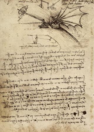 Wing Mechanism, Institut De France, Paris by Leonardo da Vinci
