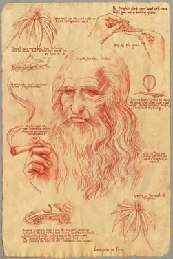 Leonardo Davinci - Pot