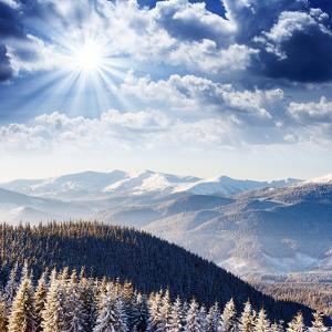 Beautiful and Frosty Winter Landscape in the Mountains by Leonid Tit