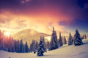 Fantastic Evening Landscape in a Colorful Sunlight. Dramatic Wintry Scene. National Park Carpathian by Leonid Tit
