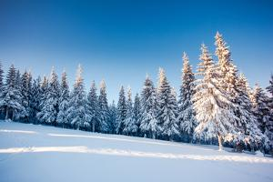 Fantastic Winter Landscape. Blue Sky. Carpathian, Ukraine, Europe. Beauty World. by Leonid Tit