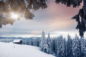 Fantastic Winter Landscape. Dramatic Overcast Sky. National Park. Carpathian, Ukraine, Europe. Beau by Leonid Tit