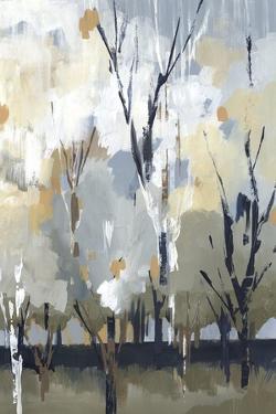 Silversong Birch I by Lera
