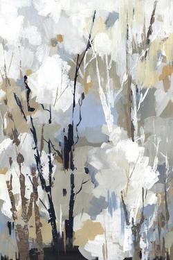 Silversong Birch II by Lera