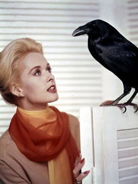 Les Oiseaux THE BIRDS d'Alfred Hitchcock with Tippi Hedren, 1963 (photo)