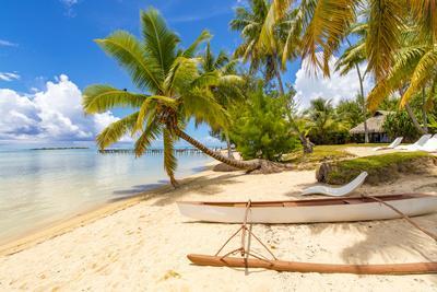https://imgc.allpostersimages.com/img/posters/les-tipaniers-tiahura-moorea-french-polynesia_u-L-Q1CZR5U0.jpg?artPerspective=n