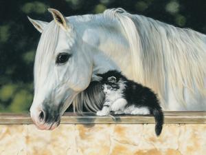 Making Friends by Leslie Harrison