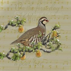 Affordable Partridge Posters for sale at AllPosters com
