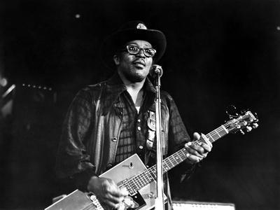 https://imgc.allpostersimages.com/img/posters/let-the-good-times-roll-bo-diddley-1973_u-L-PH4IWD0.jpg?artPerspective=n