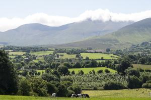Glen of Aherlow, Co. Tipperary by leverstock