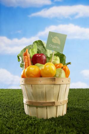 Bushel Full of Organic Fruits and Vegetables