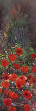 Dahlia Garden II by li bo
