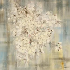 White Cherry Blossom I by li bo