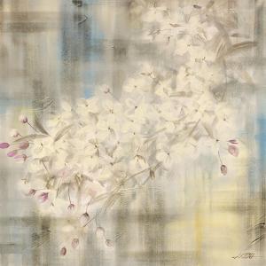 White Cherry Blossom IV by li bo