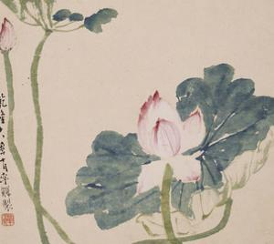 A Page (Flowers) from Flowers and Bird, Vegetables and Fruits by Li Shan