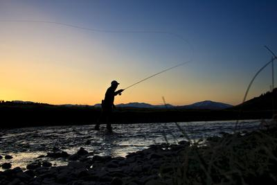 Spring Fly Fishing At Dusk Outside Of Fairplay Colorado The Mosquito Range Looms In The Background