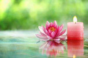 Burning Candle and Water Lily in Water. by Liang Zhang